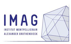 logo_IMAG
